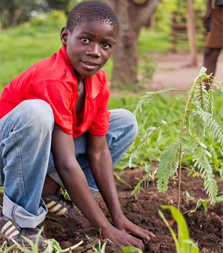tree planting at rural schools in Zambia with Raise a Smile